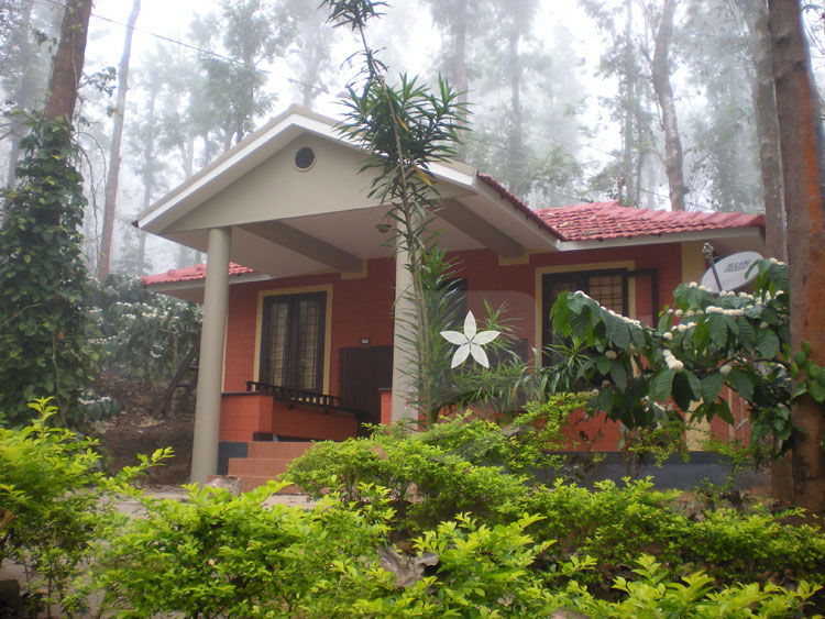 Mountain Mist Homestay