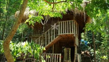 bamboo-hut